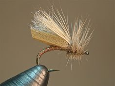 Foam Wing Caddis SBS | Washington Fly Fishing