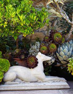 perfect garden accent!  <3