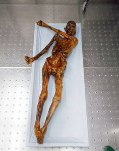 Ötzi's curse- The oldest mummified remains of any human
