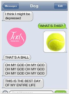 Text from Dog - Hilarious! | Pretty Fluffy