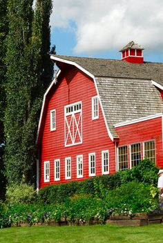 2b07a62db792e43e8fcdd48559814ba2--country-barns-country-life.jpg 736×1,099 pixels