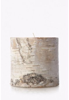 Short Pillar Birch C