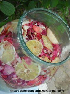 suc de trandafiri Vegetables, Drinks, Food, Syrup, Canning, Lemonade, Drinking, Veggie Food, Drink