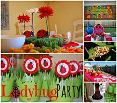 Ladybug Party Collage