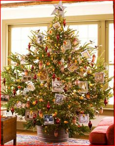 family christmas picture ideas   Unique Christmas Tree Ideas — Yellow Tennessee