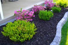 pretty patio border