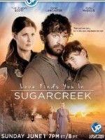 Sugarcreek'te Sevgiyi Bulmak – Love Finds You in Sugarcreek 2014 Türkçe Dublaj Film izle