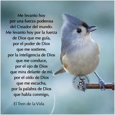 Words Of Sympathy, Good Morning In Spanish, My Step Mom, Just Pray, Spiritual Messages, God Loves You, Morning Greeting, Spanish Quotes, Dear God