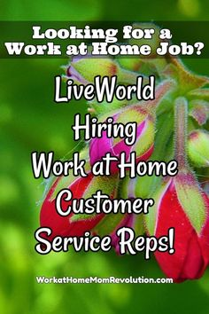 LiveWorld is hiring work at home customer service agents in the United States! Must be 18 years old to qualify for these work from home positions. Part-time.  If you enjoy helping others, then this might be an awesome home-based job for you! You can make money from home!