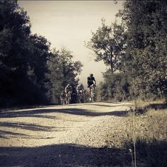 La Sterrata bike race