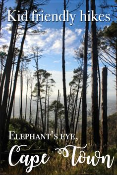 A great day out for the family, the hike to Elephant's eye in Cape Town should definitely be on your to-do list when next in the area!