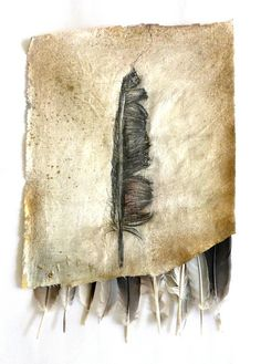 behind a drawing. graphite drawing on altered piece of cloth, feathers. Ines Seidel