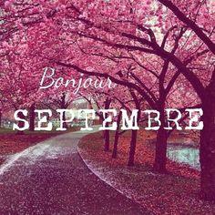 Bonjour Septembre ! // Rose // Route //