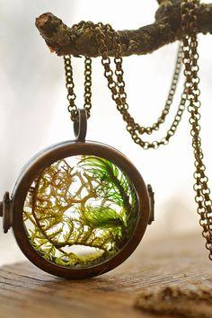 Real moss necklace , floating locket , living locket , mini terrarium jewellery , glass terrarium , pendant necklace , woodland , real plant
