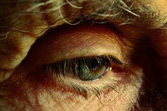 Alzheimer, casi triplicati entro il 2050  Oltre 110 milioni di malati nel mondo tra quarant'anni. Colpa soprattutto dell'invecchiamento della popolazione. Le previsioni riportate in uno studio su Neurology  Leggi l'articolo su Galileo (http://www.galileonet.it/articles/51136649a5717a75e1000022)  Credits immagine: Meritxell Garcia/Flickr (http://www.flickr.com/photos/la_petite_mtx/)