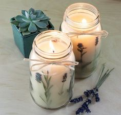 potted succulent, diy candles, two large jars, filled with candle wax, mixed with lavender Diy Candles Scented, Gel Candles, Homemade Candles, Mason Jar Candles, Candle Wax, Lavender Candles, Diy Candle Glass, Ideas Candles, Creation Bougie