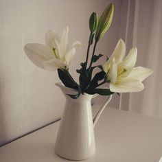 Vähän piristystä pilviseen päivään #lilja #lily  #valkoinen #white #valkoisetkukat #whiteflowers http://misstagram.com/ipost/1546228546967955652/?code=BV1TqvTl-jE