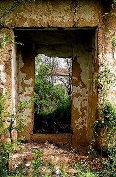 Nature Strikes Back | Flickr - Photo by alphadesigner