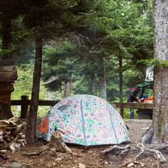 Two Man Tent by Poler Stuff #camp #gear #tent