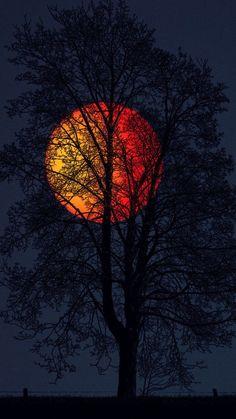 Image in wallpaper album Beautiful Nature Wallpaper, Beautiful Moon, Moon Pictures, Nature Pictures, Moon Painting, Moon Photography, Photography Aesthetic, Moon Lovers, Pretty Wallpapers
