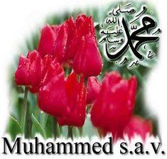 PEYGAMBERİMİZ (S.A.V.) HAYATI  Peygamberimizin Mübârek Ecdâdı:    Peygamberimiz'in (sallallâhü aleyhi ve sellem) Hz. İsmâil'in sülâlesinden olan Adnân'a kadar babası Ab dullah tarafından dedeleri şöyledir: Hz. Muhammed (s.a.v.), Abdullah, Abdülmutta lib, Hâşim, Abdimenâf, Kusay, Kilâb, Mürre, Ka'b, Lüey, Gâlib, Fihr, Mâlik, Nadr, Kinâne, Huzeyme, Müdrike, İlyas, Mudar, Nizâr, Me'ad ve Adnân haz retleridir.   Peygamberimizin annesi Amine tarafından dedeleri: Hz. Muhammed (s.a.v.), Âmine…