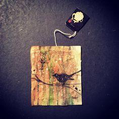 Journey of a Tea Bag : Photo