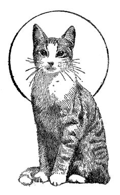 Cat Coloring Pages - 3