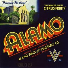 Alamo, Texas TX - Vintage Remember the Alamo Orange Citrus Fruit Crate Box Label Advertising Art Print. Printed on highest quality stock soft gloss paper. Actual image dimensions are approximately 10 x 10 inches. This is a fine reproduction of an extremely rare California Citrus Crate Label originally printed in the early 1900