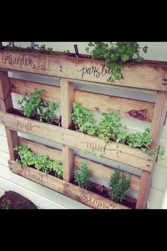 Diy pallet herb garden, if only my penmanship were that beautiful...