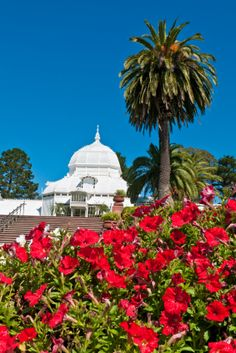 Golden Gate Park Conservatory of Flowers glasshouse San Francisco California