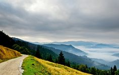 Last september on a short trip to Rarau Mountains, Suceava County, Romania