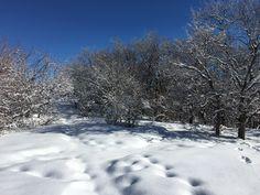 Akkain area - Almaty Kazakhstan, Snow, Outdoor, Outdoors, Outdoor Living, Garden, Eyes