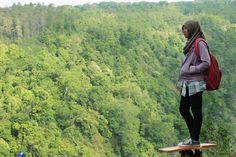 OMG Spot Hutan Instagenic yang Bikin Travelers Terpukau  Mahagoni Grand Park Probolinggo Jawa Timur