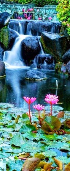 Lotus Blossom Waterfall, Bali