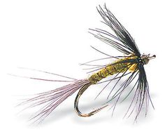 Swinging a wet fly across the current is one of the great joys of fly fishing, but interestingly many anglers use wet flies very little. This great bead head soft hackle fly is designed to be use