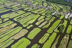 Tranquil towns dot the landscape in the Netherlands' polder country ...