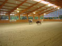 Vacation in Equestrian Wonderland – Part 2 | Hawk Hill