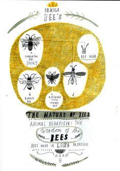 Bee diagram by Katt Frank.  Her tumblr is wonderful.