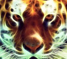 cool tiger edit | cool animal edits | Pinterest