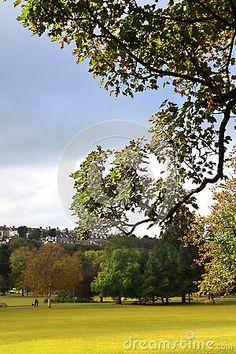 view-preston-park-bright-green-grass-trees-building-hillside-background