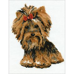 Yorkshire Terrier Counted Cross Stitch Kit