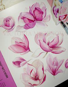 Victoria Mezenova watercolor painting of pink magnolia blossoms. Watercolor Projects, Watercolor Landscape, Floral Watercolor, Watercolor Paintings, Flor Magnolia, Magnolia Flower, Watercolor Flowers Tutorial, Watercolor Illustration, Illustration Flower