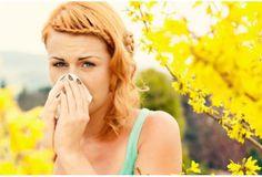 Combattre l'allergie aux pollens ! Ce qu'il faut savoir.