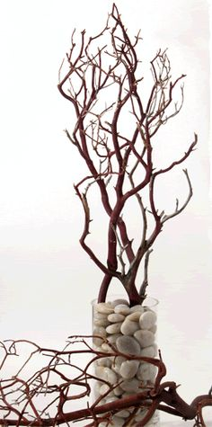 awesome structure in this branch and rock centerpiece. Great way of starting neutral to work with dramatic lighting effects.