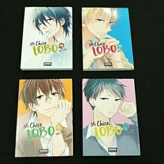 Pin By Eastfield College Library On Manga Fruits Basket Manga