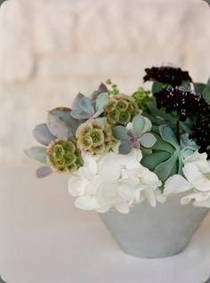 grey-green succulents, hydrangeas, scabiosa pods and near black scabiosa, http://botanicalbrouhaha.blogspot.com/2009/12/going-green.html