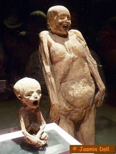 The Guanajuato mummy museum houses the smallest mummy in the world, along with its unfortunate mother. She was a victim of malnutrition and cholera and died when she was 6 months pregnant. Her child is one of the most well-preserved mummies, according to the notes.
