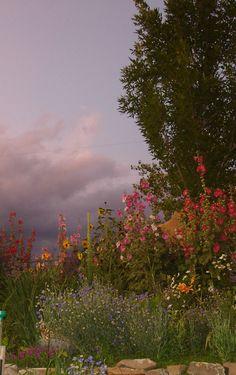 Nice perennial garden.  // Great Gardens & Ideas //