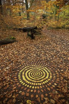 37 Trendy Ideas For Nature Mandalas Art Andy Goldsworthy Land Art, Art Et Nature, Nature Crafts, Nature Artists, Mandala Nature, Mandala Art, Art Environnemental, Arte Do Harry Potter, Ephemeral Art