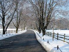 http://pixdaus.com/garrison-forest-school-driveway-maryland-path-snow-usa-winte/items/view/258204/